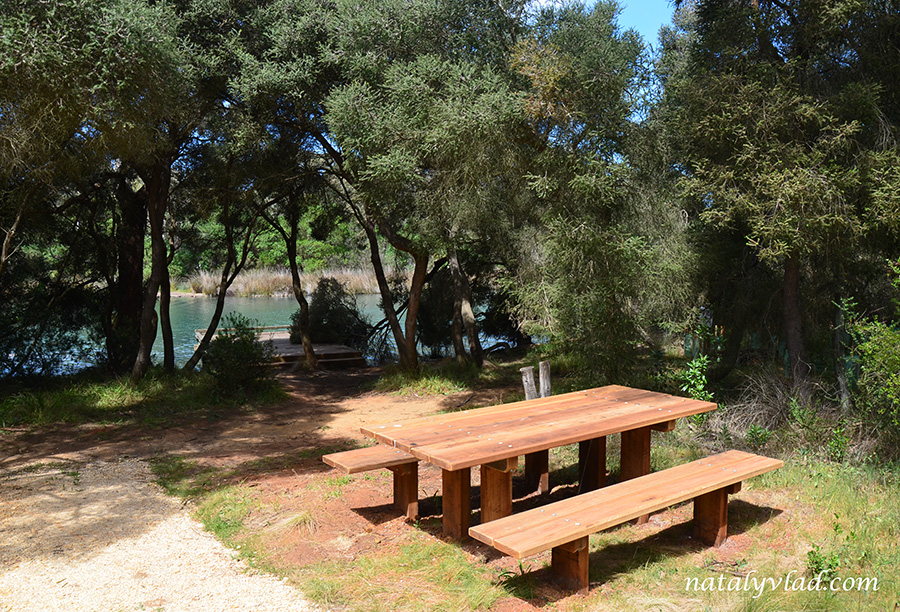Пеший трек вдоль реки Стол скамейки для пикника