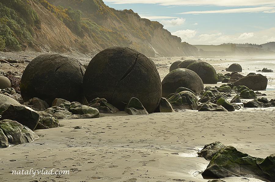 Новая Зеландия Валуны Моераки Пляж