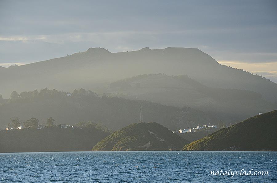 Новая Зеландия Полуостров Отаго Дорога вдоль побережья