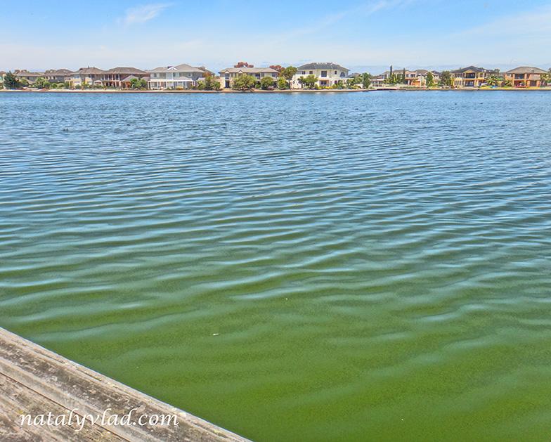 Жизнь в Австралии Дома у озера