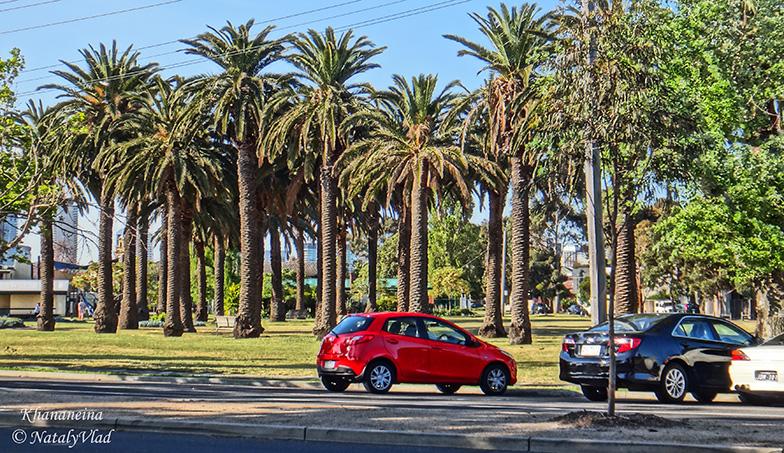 Парки в Порт Мельбурне Edwards Park