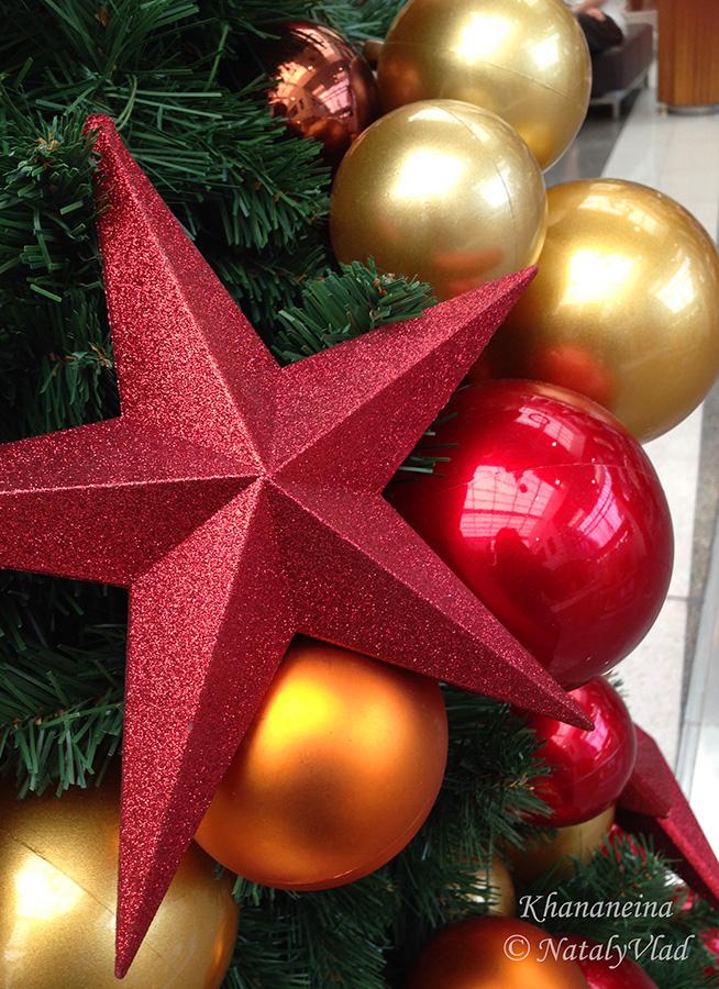 Новогодняя елка и украшения в Австралии