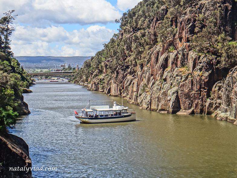 Ущелье Катаракт в Лонсестона Тасмания
