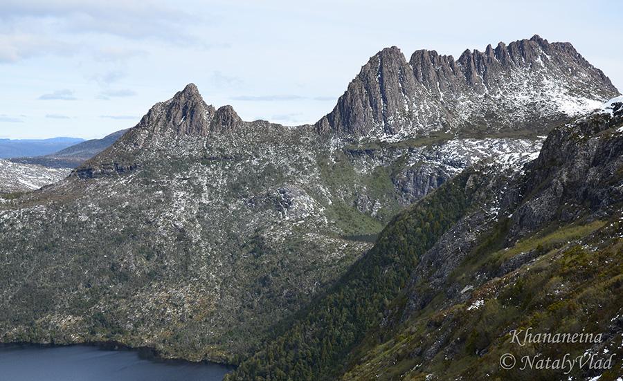 Тасмания Крэдл Маунтин Природа