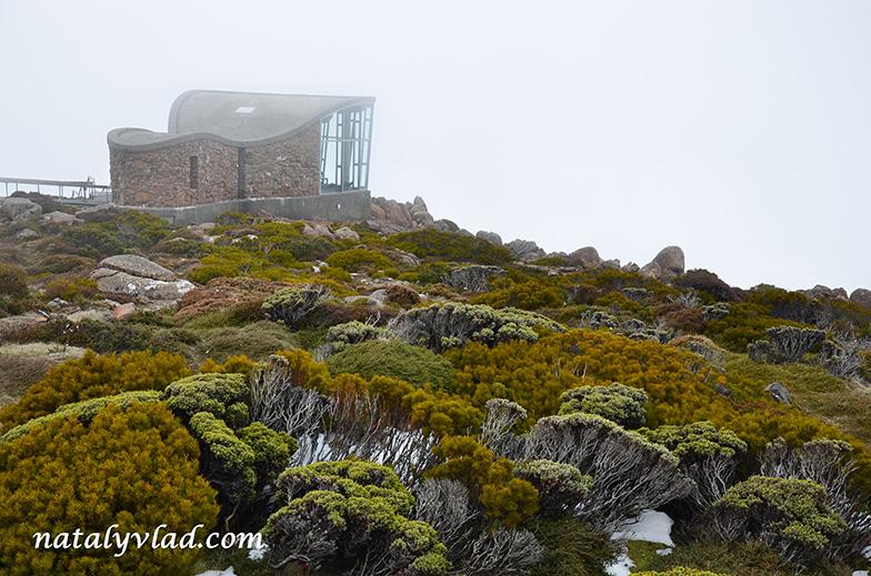 Тасмания Хобарт Гора Веллингтон