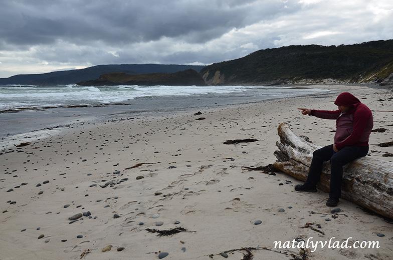 Пляжи и берег океана на Тасмании