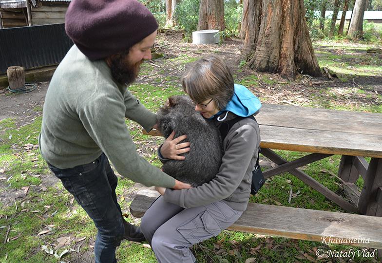 Подержать вомбата на руках в Австралии