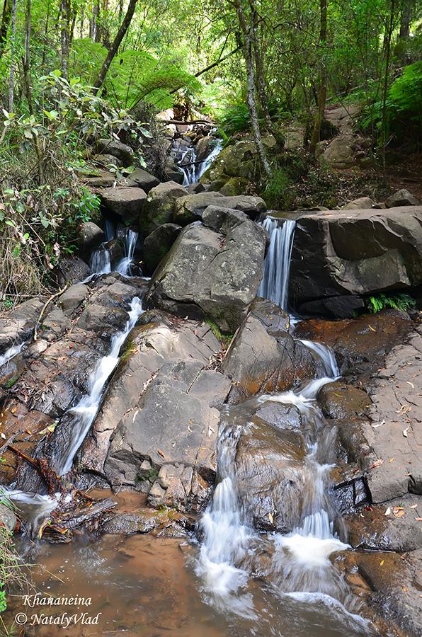 Австралия Путешествие Данденонг Водопады