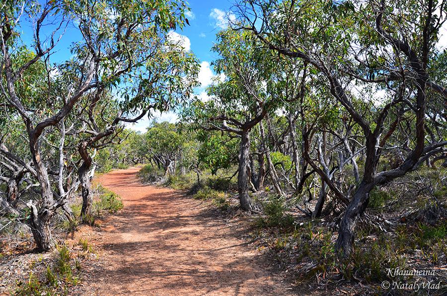 Австралия Путешествие пешком