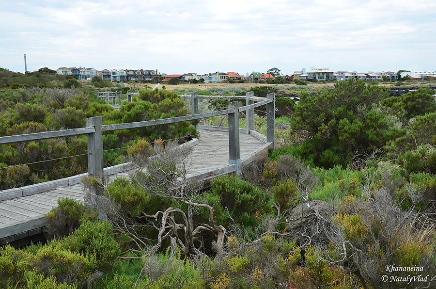 Жизнь в Австралии Природа Прогулка