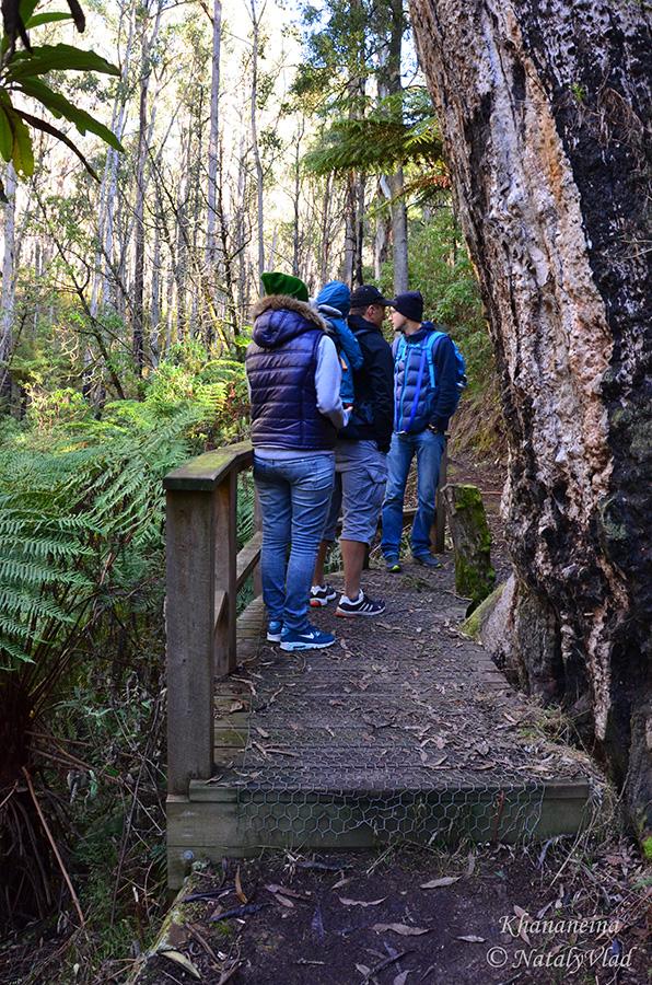 Блог об Австралии Путешествия