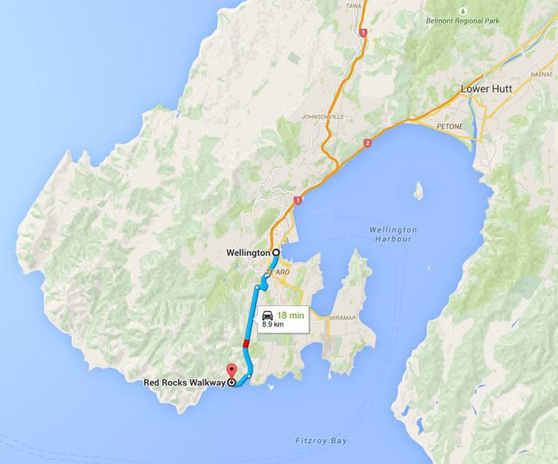 New Zealand Wellington Red Rocks Walkway map