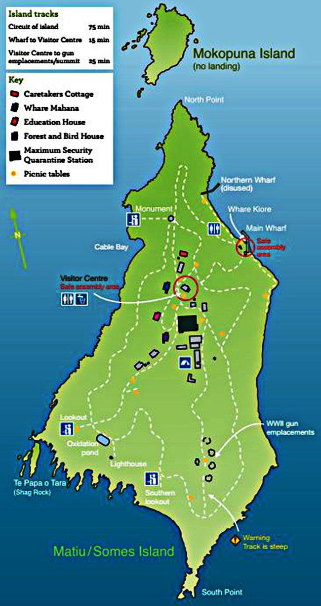 wellington-matiu-somes-island-walking-tracks-map