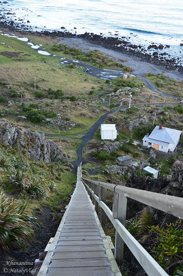Путешествие по Новой Зеландии Блог