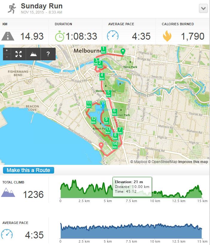 City2Sea-run-Melbourne-2015-2