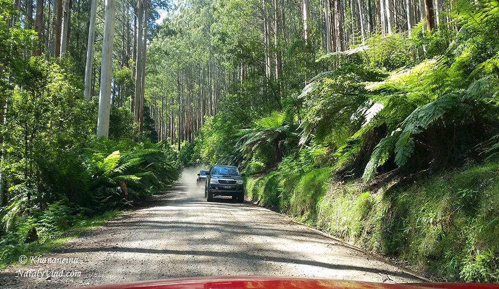 Путешествие по Австралии Фото