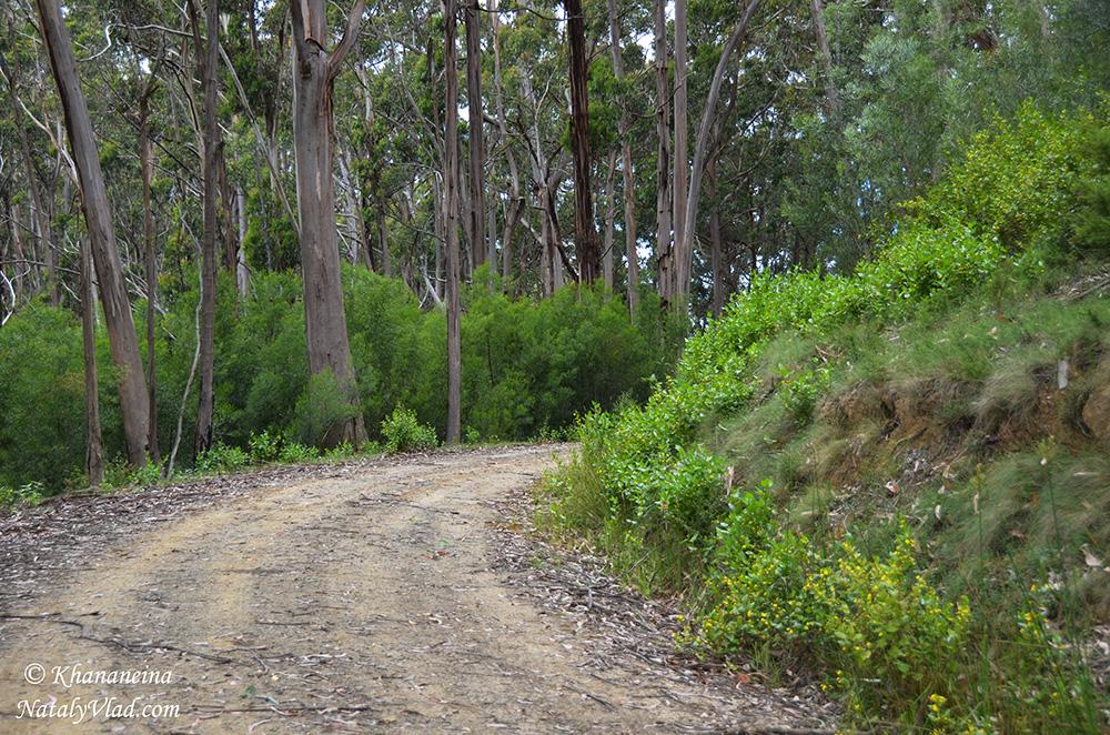 Путешествия по Австралии Блог Фото