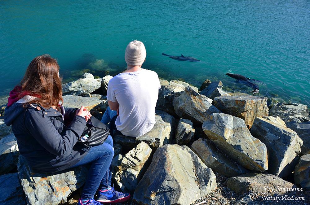 Путешествие по Новой Зеландии фото Блог
