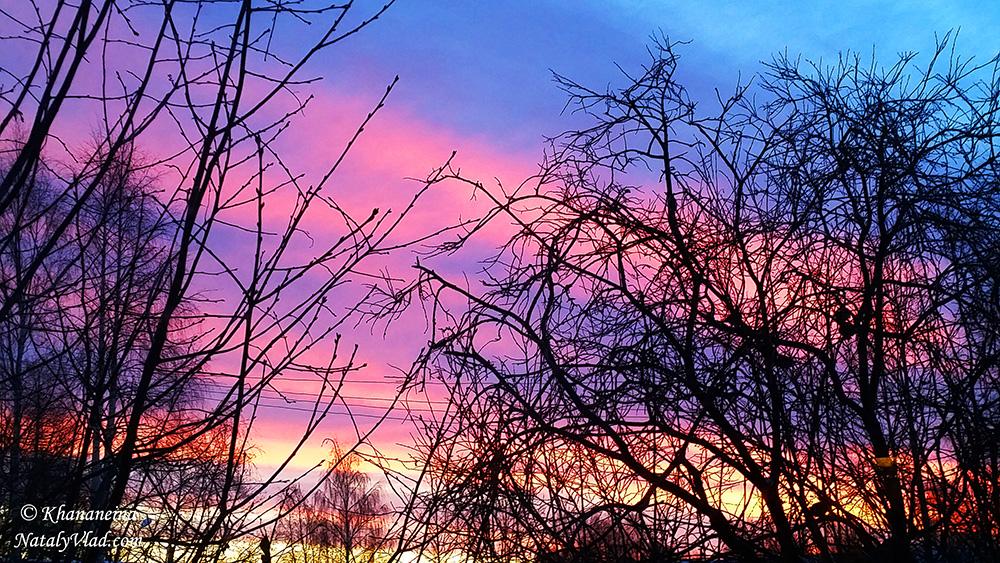 Зимний рассвет Фото