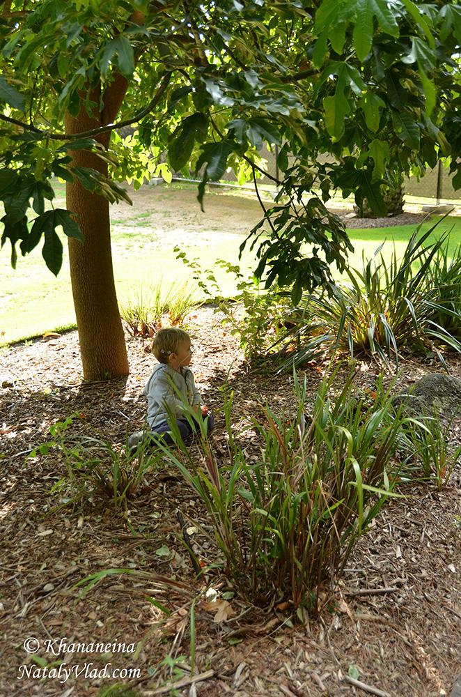 Жизнь в Австралии Блог Фото