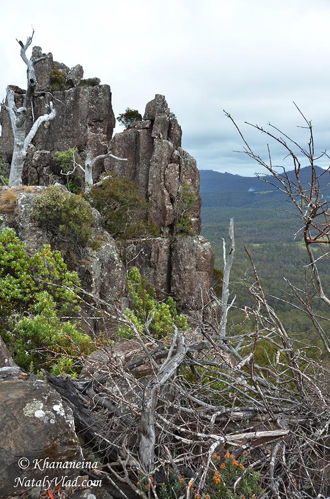Тасмания Что посмотреть Фото