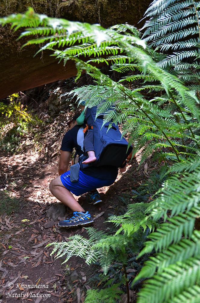 Путешествия по Австралии с ребенком Блог Фото