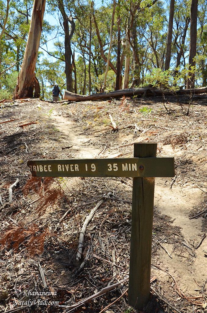 Путешествия по Австралии Фото Блог