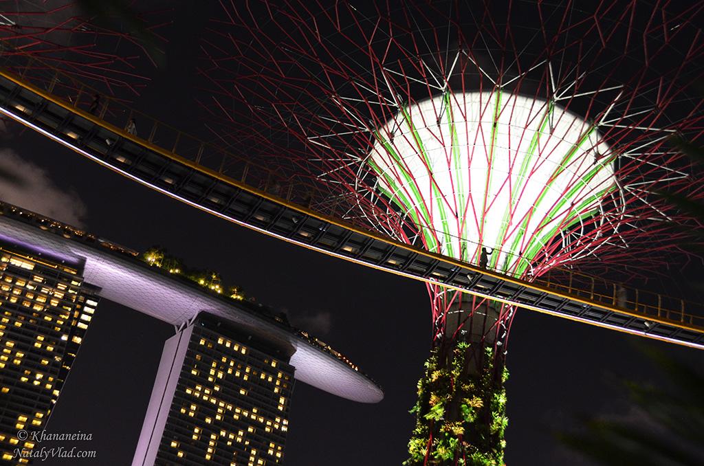Ночной Сингапур Фото