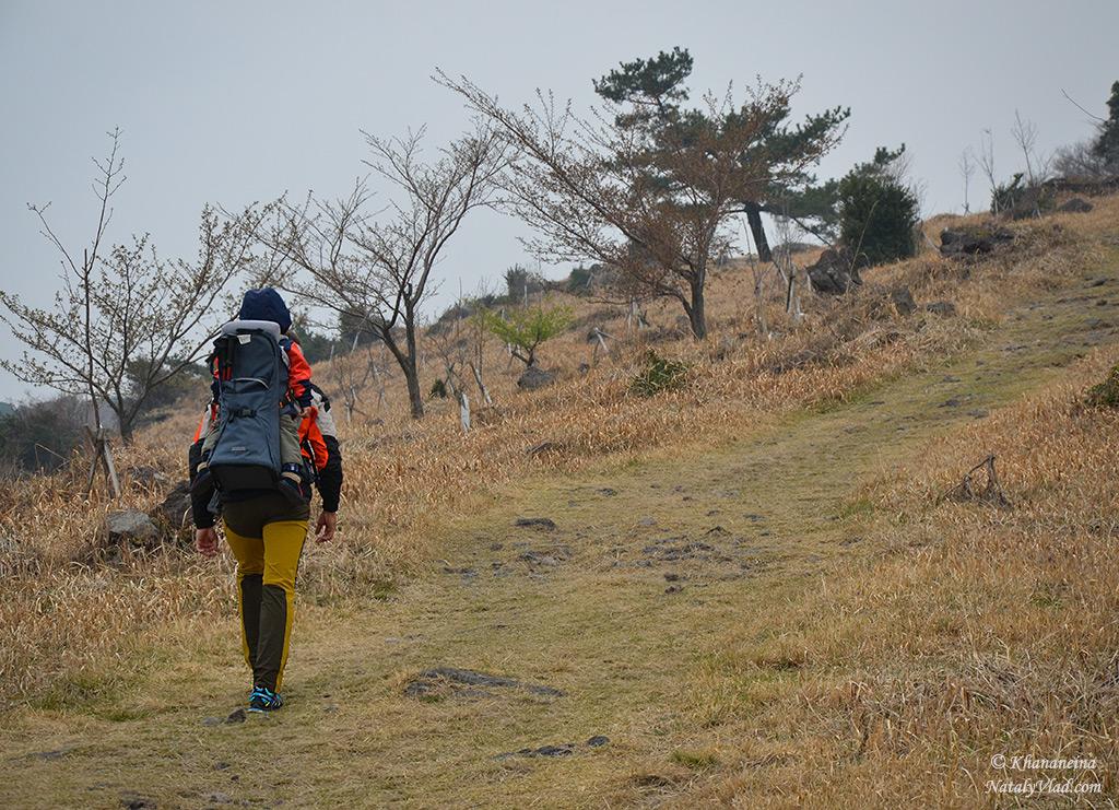 Путешествие по Южной Корее Фото