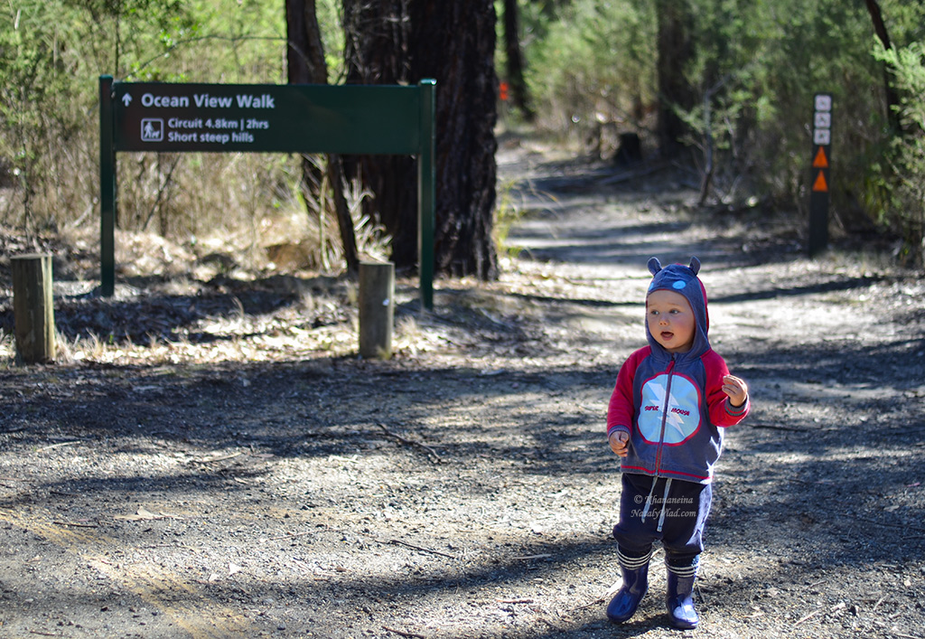 Путешествие по Австралии с ребенком Фото