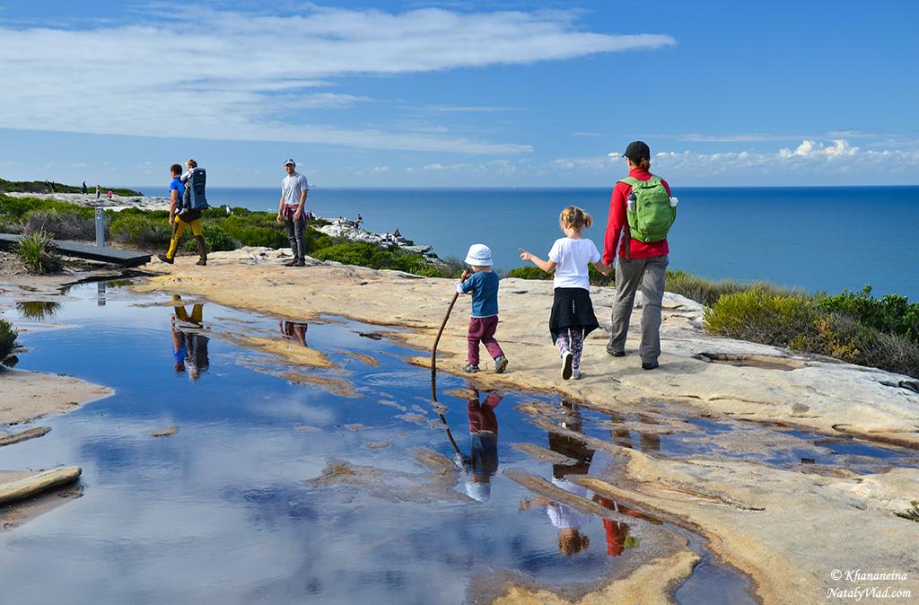 Австралия Природа Фото