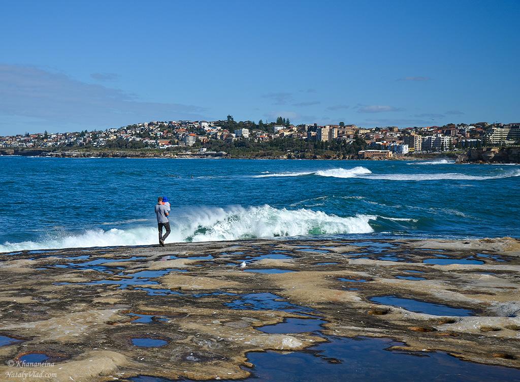 Австралия Сидней Фото